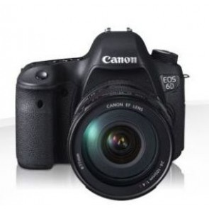 Canon EOS 6D mit Objektiv EF 24-70mm 4.0 L IS USM (8035B039)